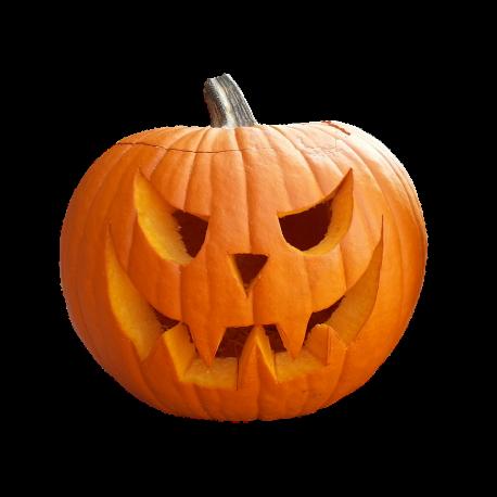 Articulos Halloween